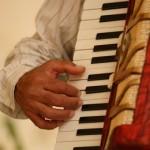 akordiyon2
