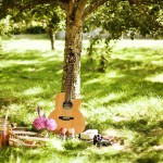 piknik sosyalleşme