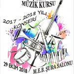 senkron müzik konser 2018